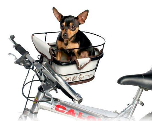 Que tal então apostar nas cadeirinhas para passear de bike com seu cão?