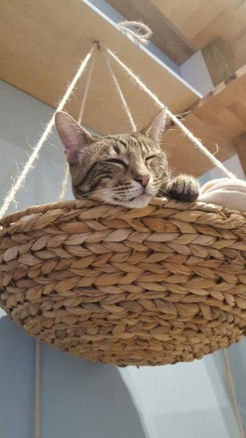 cama simples de fazer