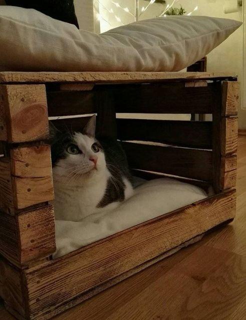 cama com caixote de feira