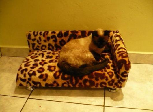 cama pelúcia