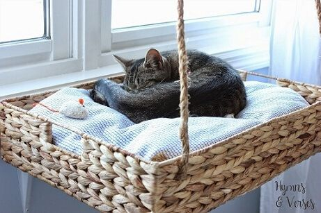 cama cesto