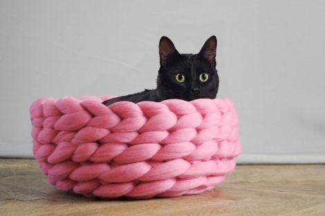 cama para gato filhote