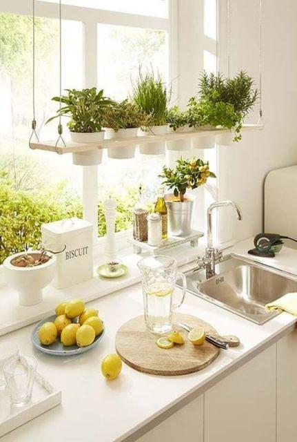 horta suspensa cozinha