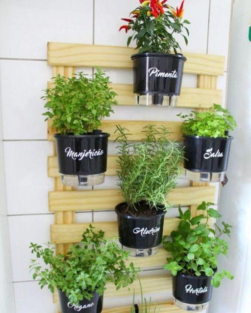 horta com vasos autoirrigáveis