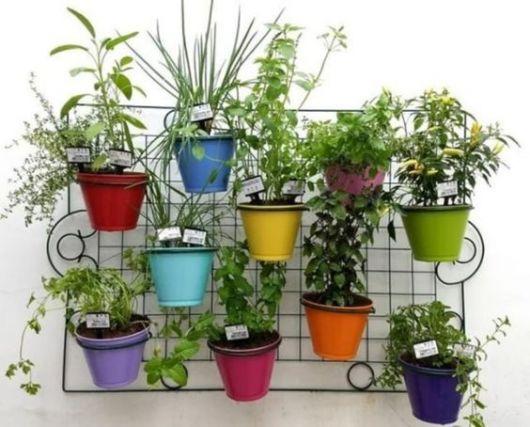 horta pequenas vasos