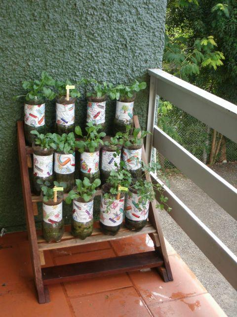 horta pequena caseira