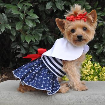 ideias de vestido para cachorro