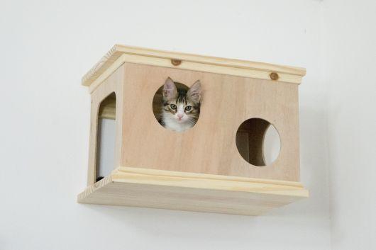 Nicho único e compacto para gatos pequenos