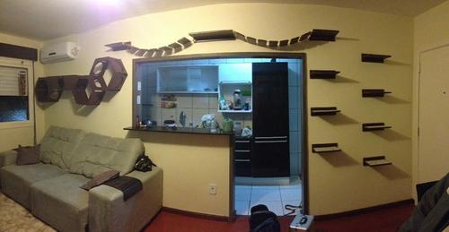 A instalação dos nichos e prateleiras para gatos ajuda até a dar um up na decoração da casa