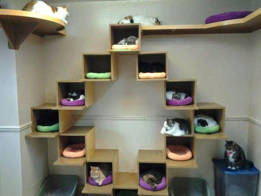 Você pode até criar formas com essas estruturas, como essa com vários nichos para quem tem muitos gatos