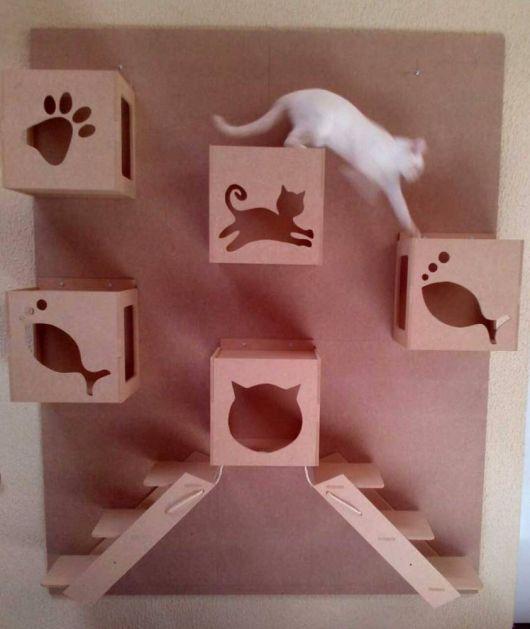 Geralmente os nichos são personalizados com referências aos próprios gatinhos