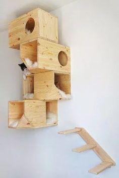 Você mesmo pode produzir os nichos de madeira caso saiba trabalhar com esse material