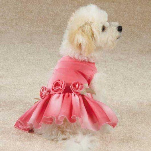 vestido para cachorro rosa de seda com brilho