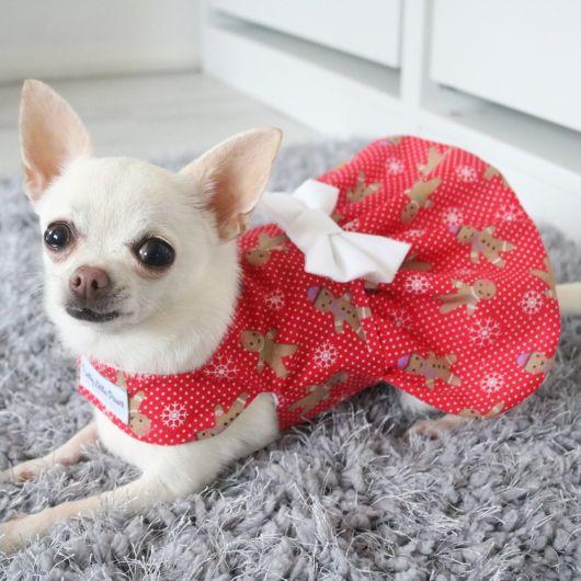 vestido para cachorro estampado para raças pequenas