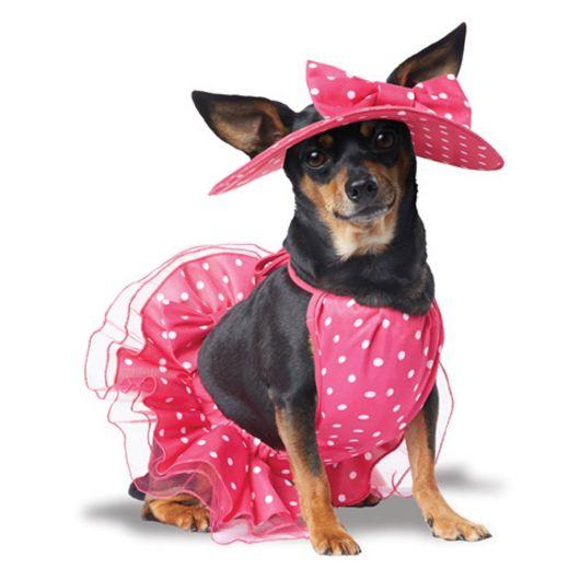 vestido para cachorro lady rosa