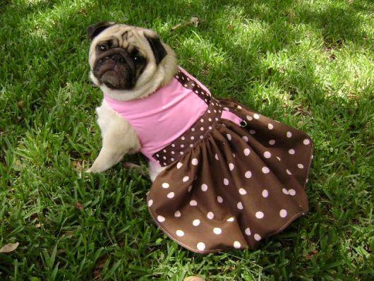 vestido para cachorro marrom e rosa