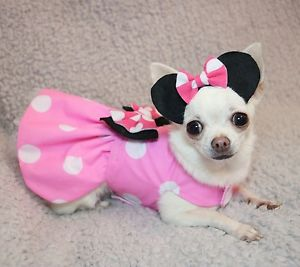 vestido para cachorro da Minnie