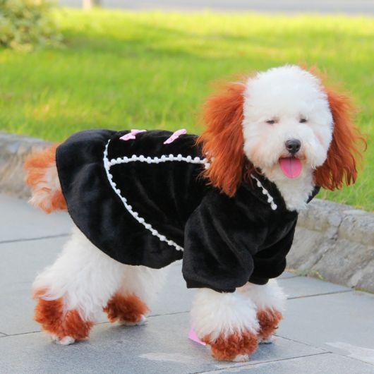 vestido para cachorro look inverno