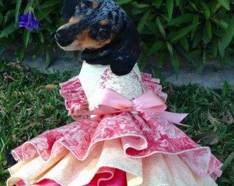 vestido para cachorro rosa com saia