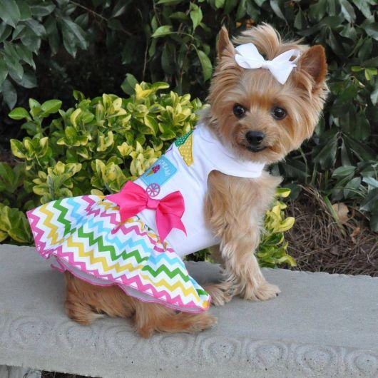 vestido para cachorro de algodão