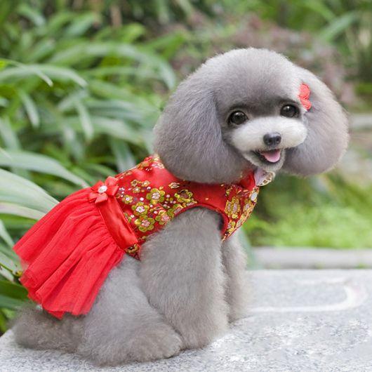 vestido para cachorro vermelho com flores