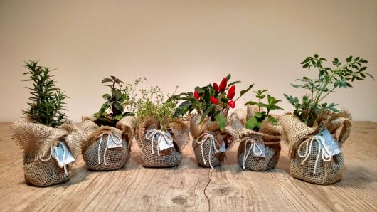 Vasinhos decorados com juta e sisal
