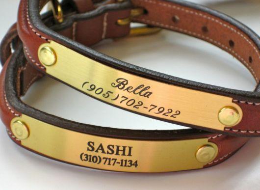 Coleira para cachorro de couro com placa de identificação dourada