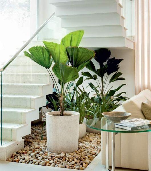 Jardim de inverno na sala decorado com vaso grande branco
