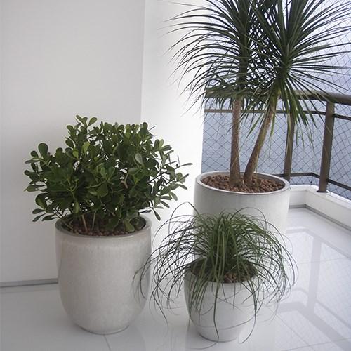 Vasos vietnamitas brancos para compor decoração de apartamento