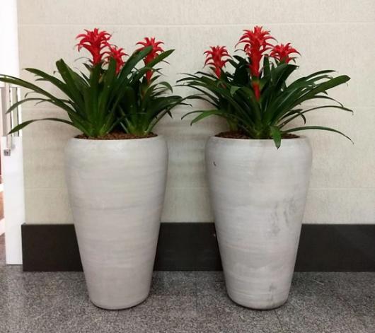 Aposte em pares de vasos grandes vietnamitas