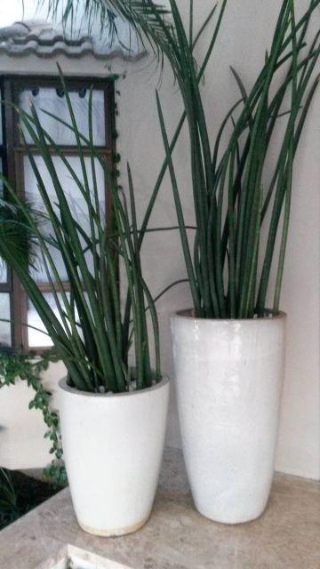 Faça um jogo com vasos de tamanhos diferentes