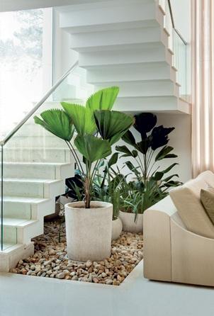 A decoração embaixo da escada com plantas é super clássica