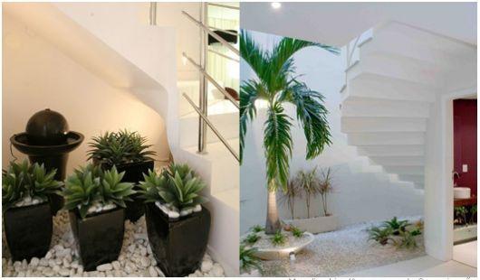Saiba escolher os tipos de plantas para seu jardim embaixo da escada