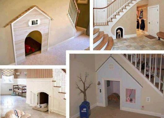 Novas possibilidades para o seu cãozinho