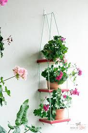Prateleira pequena para plantas.