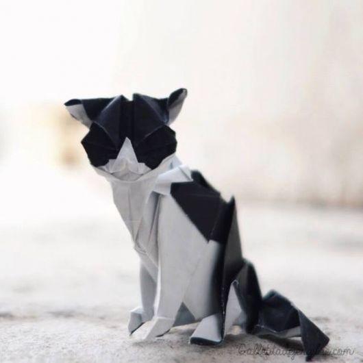 Dobraduras de animais: Gato preto e branco
