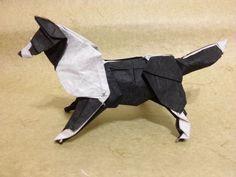 Dobraduras de animais: Cachorro preto e branco