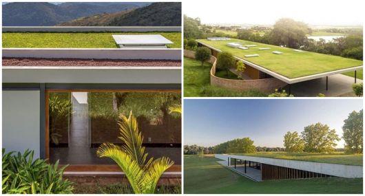telhados com grama