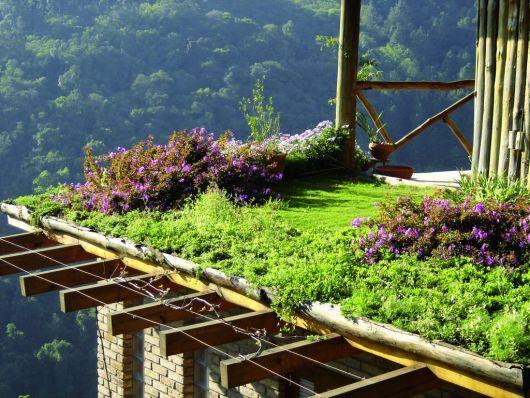 jardim com flores no telhado