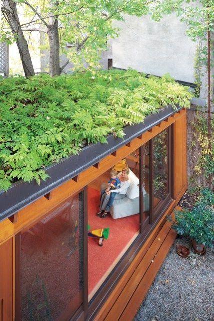 telhado com samambaia
