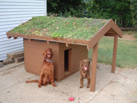 A casinha de madeira com telhado sustentável está em alta