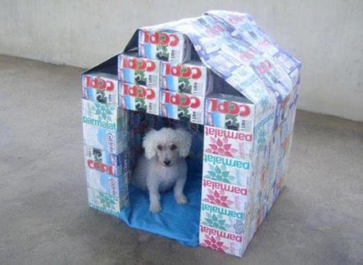 Casinha de cachorro grande e improvisada com caixinhas de leite