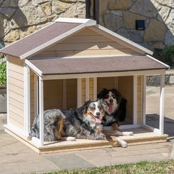 Essa casinha comporta até dois cães grandes