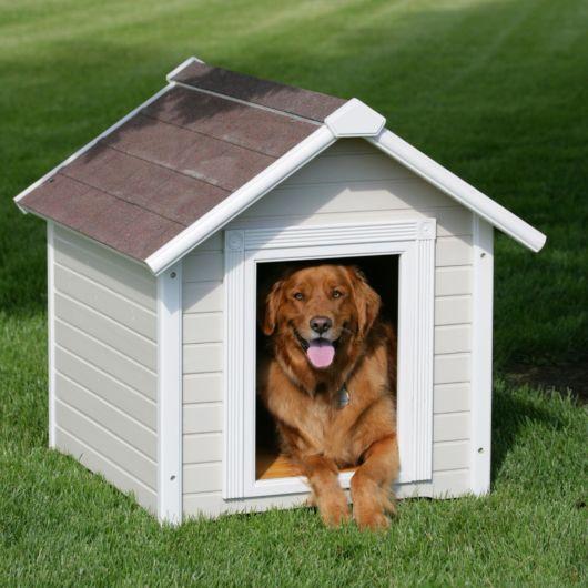Modelo único em cor branca para cães de vários portes