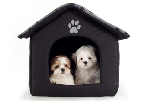 Casinha em cor preta para dois cães pequenos
