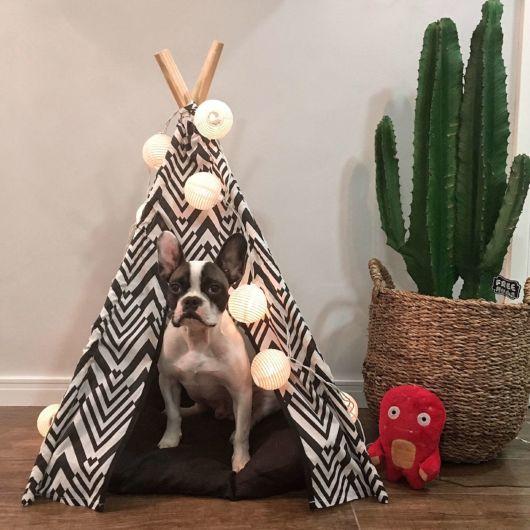 Que tal essa casa de cachorro grande de pano em formato de cabana?
