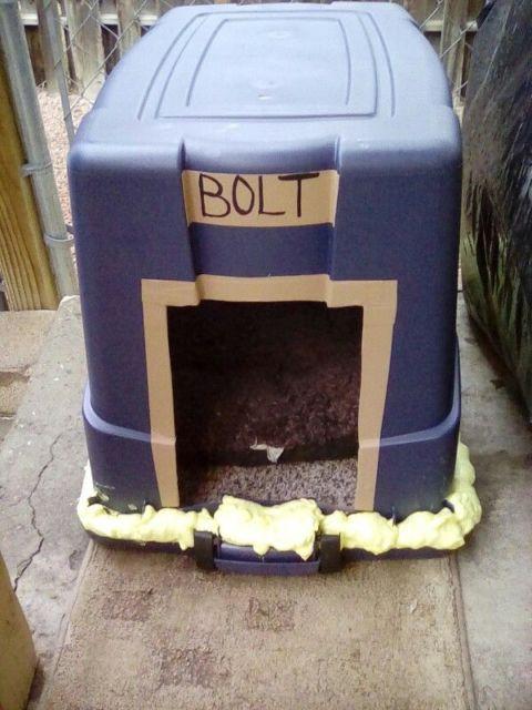 Alguns modelos de casinha de cachorro grande podem até ser customizados em casa