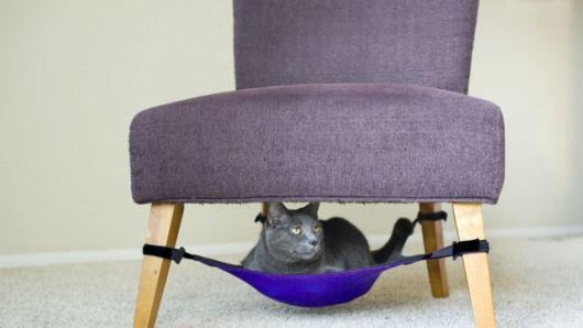 modelos de rede para gatos