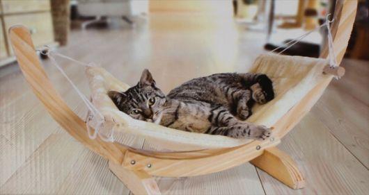 rede para gatos cama
