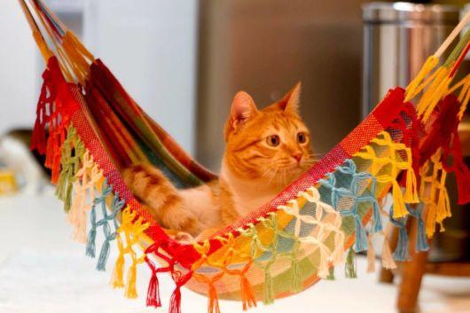 rede para gatos modelo tradicional